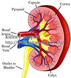 Reducing progression of Stage 3 Kidney Failure in Lupus Nephritis can be achieved by taking early and effective treatment.