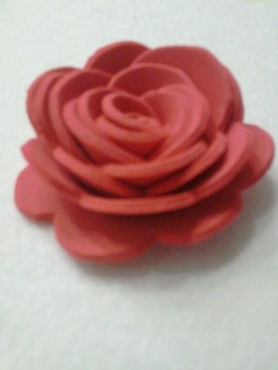 Rosa crepla