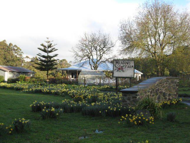 Meadows Farm Cottage   Otways, VIC   Accommodation