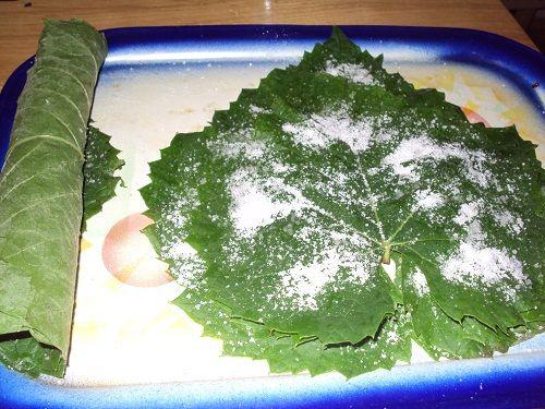 Cristina's world: Frunze de vita de vie conservate in saramura, la borcan