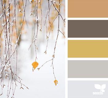 Ideias para cores na decoração para o casamento   O Nosso Casamento