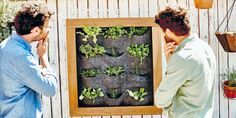 DIY mur végétal: comment le faire soi même