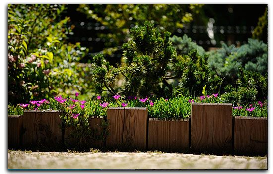 Bordure r cup faire avec des voliges cr ations en for Bordures de jardin