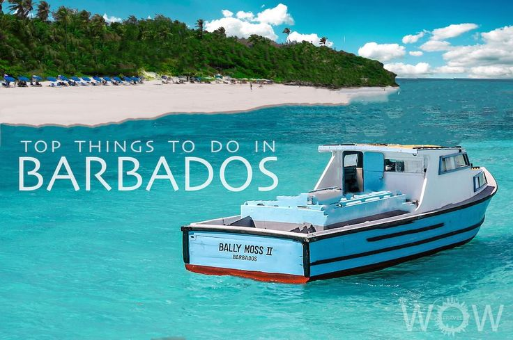 This beautiful little island offers a broad range of intriguing attractions, makes it the perfect Caribbean vacation. Here are out Top 9 Things To Do In Barbados.