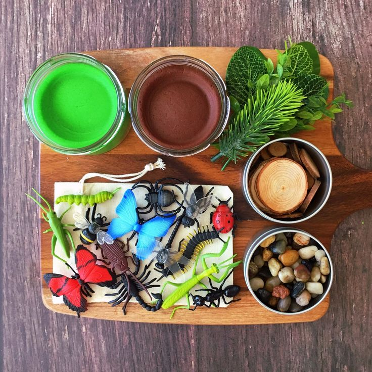Insects sensory play kit with playdough, stones, wood slices and foliage.