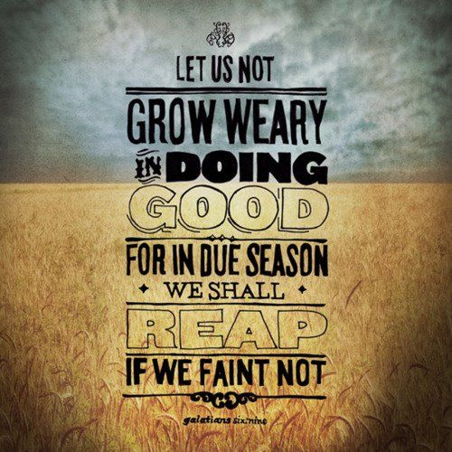 """Let us not grow weary in doing good; for in due season we shall reap if we faint not."" Galatians 6:9 <-- There is a Cost, BUT Also a Blessing when stepping out in faith, and responding in obedience to what God has called us to do. @Carey Scott"
