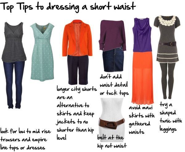 short torso - short waist - high waisted