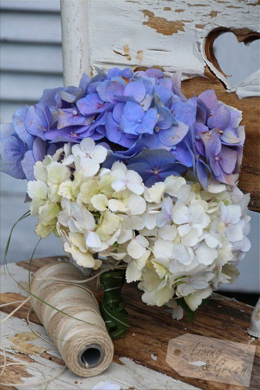 Hortensien Dekoration Hydrangea decoration
