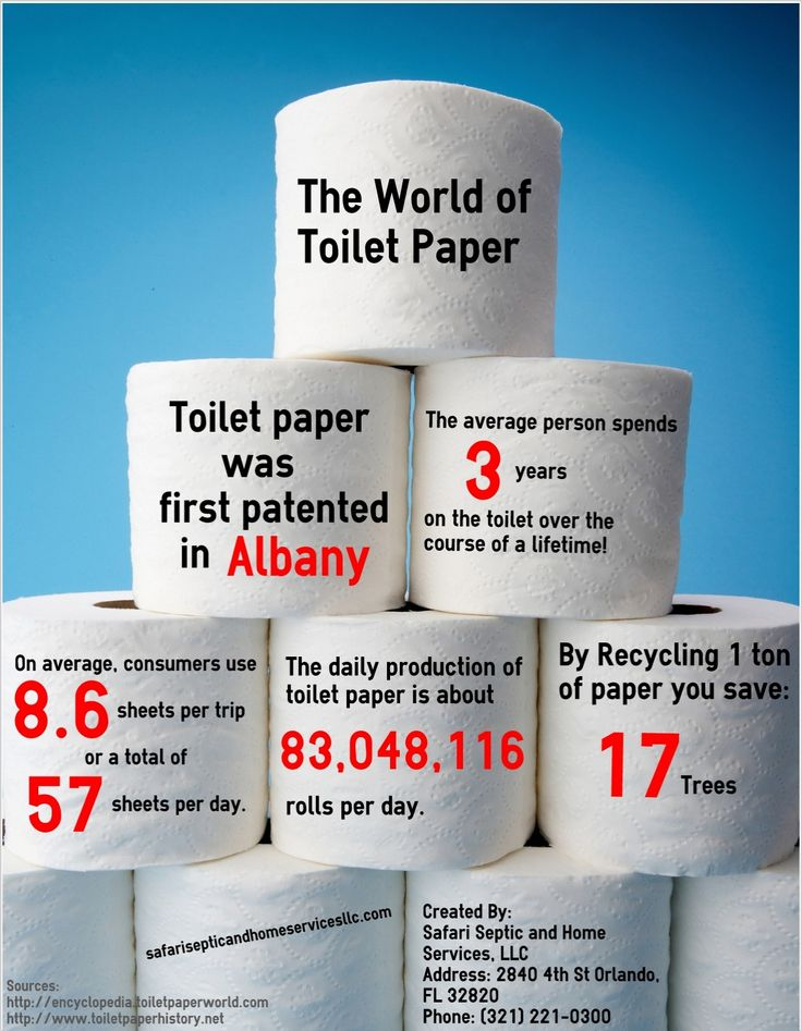 best toilet paper in the world - photo #28