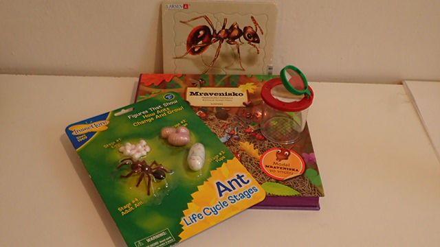 ŽIVOT MRAVCA - balíček aktivít (kniha, životný cyklus mravca - miniatúry, puzzle mravec - časti tela, pohár na pozorovanie chrobákov s lupou).