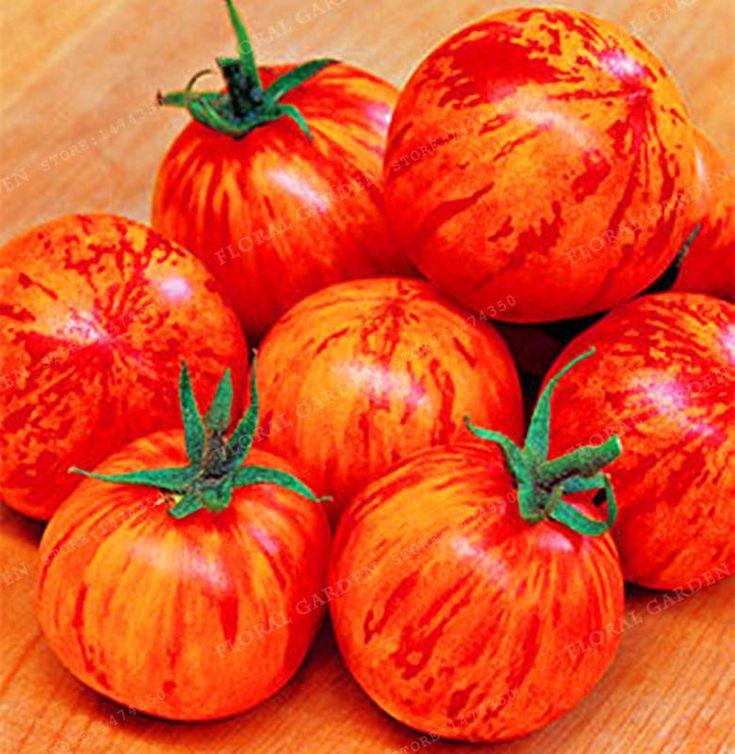 "50pcs Rare tomato seeds HEIRLOOM VEGETABLE SEEDS -""Lycopersicon Esculentum"" Nutritious vegetable NON-GMO DIY Home Garden Plant"