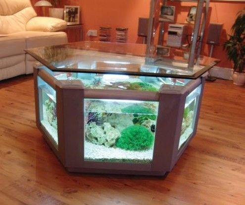 Table into aquarium! We have lots of lumber and tables at the ReStore to create a cool fish tank like this!