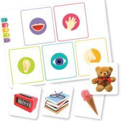 Un jeu sur les 5 sens livré avec un guide pédagogique autour d'activités de tri.