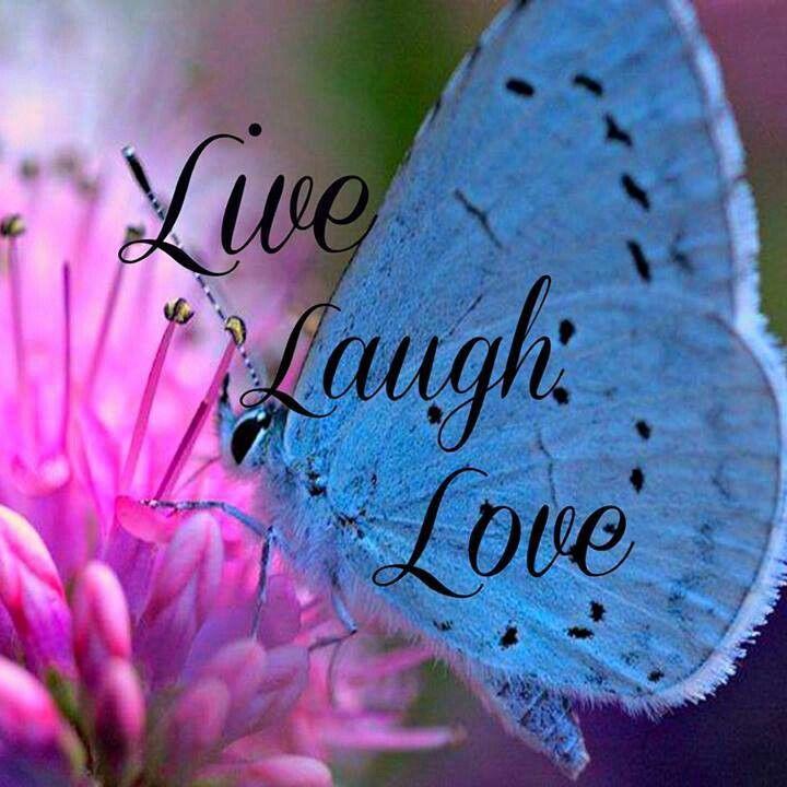 94 Best Live Laugh Love Images On Pinterest