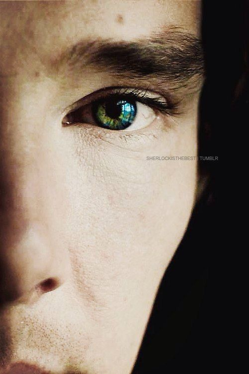 8 best images about Benedict's Eyes on Pinterest