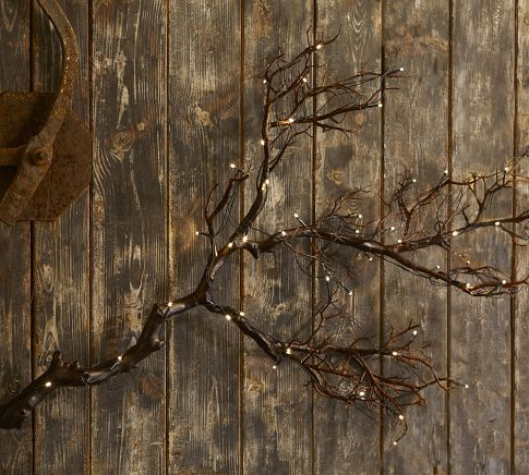 Fall decorating: wrap a string of lights around branches for a rustic woodsy look. Bundles of branches would also look nice in a couple of garden urns for a front porch. Could also work right through Christmas by adding a few decorative Christmas balls!