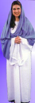 Vigin Mary Costume
