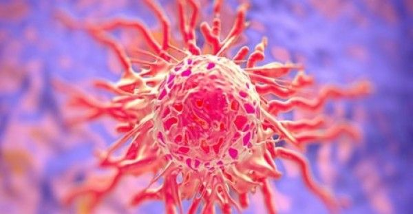 ΕΥΧΑΡΙΣΤΑ ΤΑ ΝΕΑ ΓΙΑ ΤΟΝ ΚΑΡΚΙΝΟ: Αυτή είναι η βιταμίνη που τον προλαμβάνει