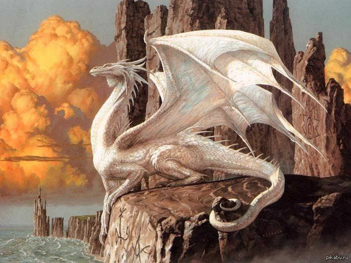 белый дракон из сказки фото итоге