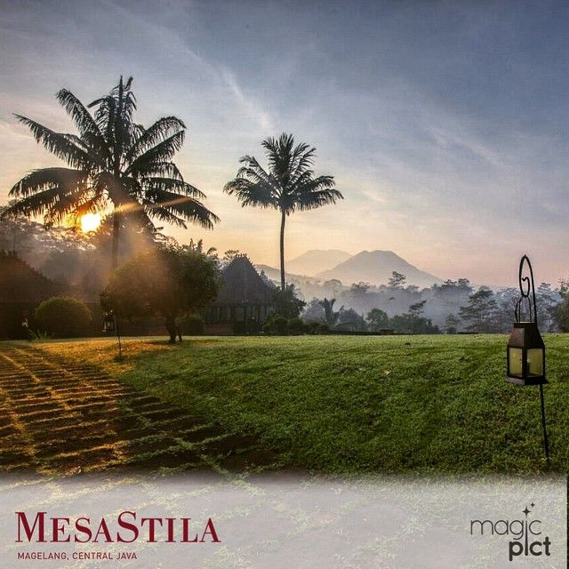 MesaStila_vacation with 10K