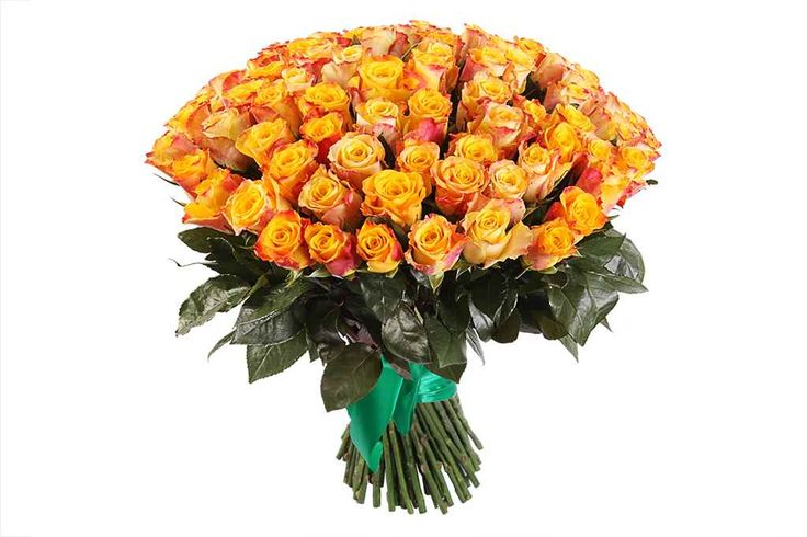 крутой Букет 101 роза Мари Клер  #Букеты #Оригинальныебукеты,Букет101розаМариКлер Посмотретьhttp://xn--80aaahaatmc2afxyc9bl9d.xn--p1acf/product/buket-101-roza-mari-kler