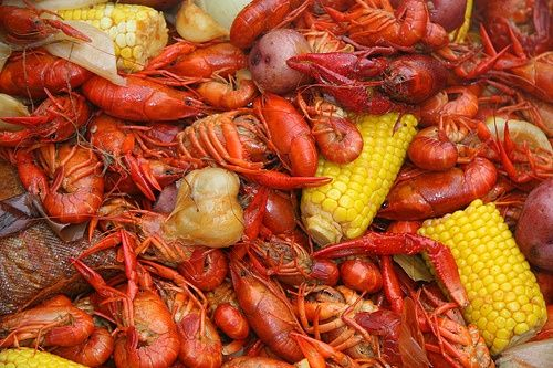 101 Expert Crawfish Boilers Give Advice