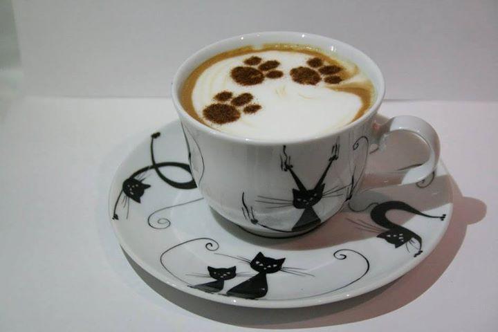 Čas na kávu...