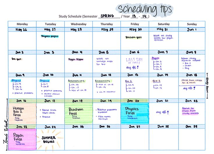 7 Best Tips on How to Make a Study Timetable and Stick to It