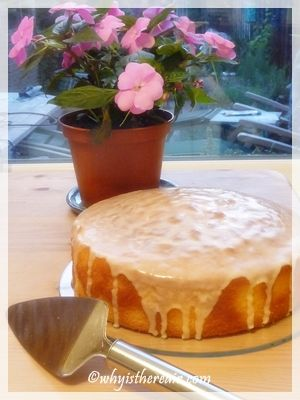 Madame Thermomix's Sicilian Orange Cake