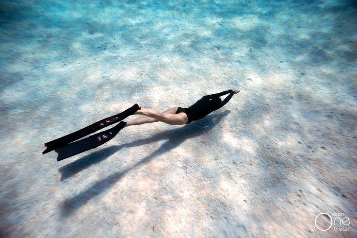 Feeling free. :-) Photo taken on one breath by Eusebio Saenz de Santamaria. #freediving #underwater #1ocean1breath #ocean #Roatan #oneoceanonebreath
