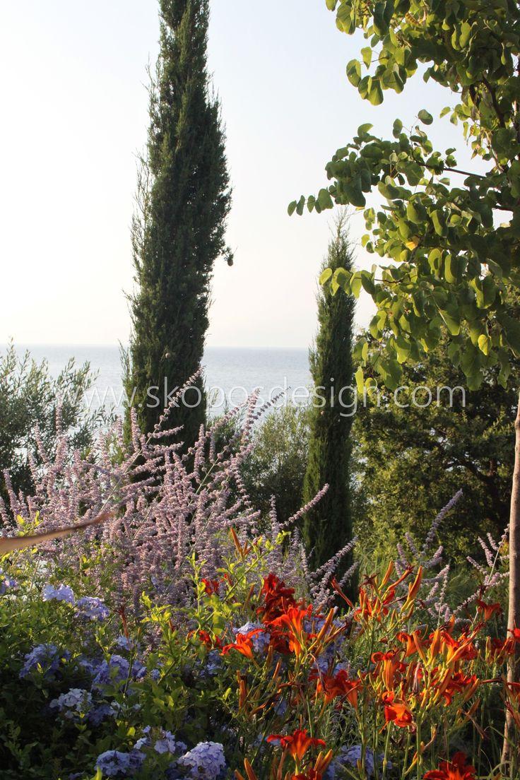 Mediterranean planting