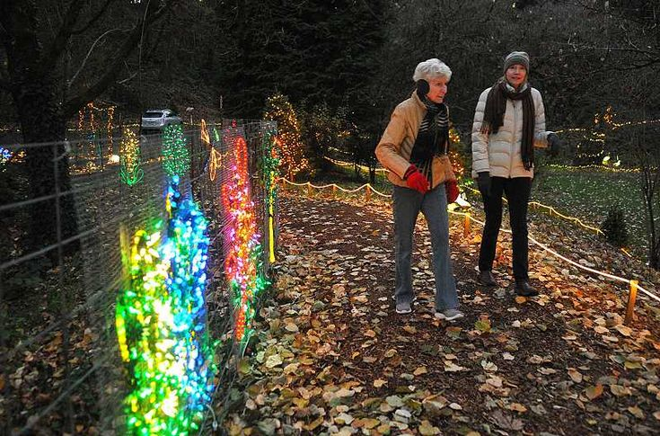 Lighting of Maddax Woods illuminates Saturday, Local News, West Linn local News, Breaking News alerts for West Linn city.