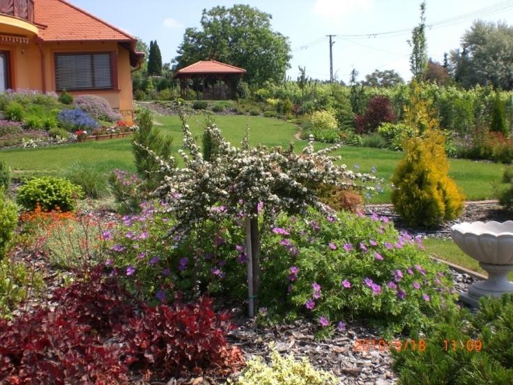 Beautiful garden you need? www.floralgarden.hu