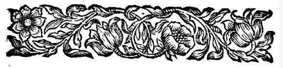 Gravure de fleurs 1711/ engraving flower 1711