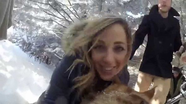 A young couple decided to film their wedding day from the dog's perspective. The result is absolutely charming!
