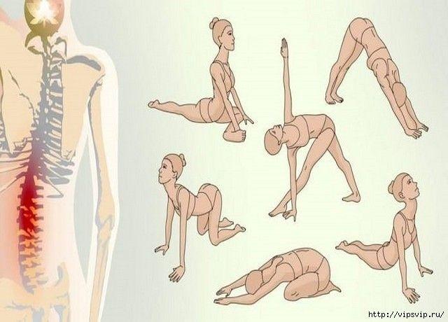 Если вас мучает острая боль в спине и шее, имеются проблемы с давлением и вы часто просыпаетесь во сне, эти упражнения — то, что вам надо! Данный комплекс составлен из простейших поз йоги для начинаю…