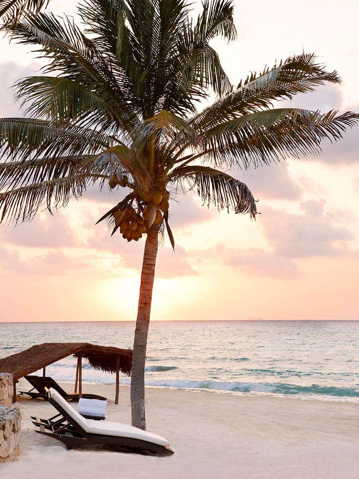 viceroy riviera maya hotel, playa del carmen, mexico