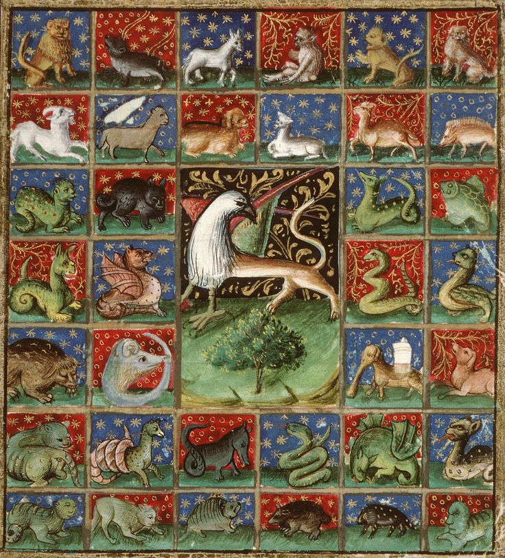 The Properties of Beasts. Bartholomeus Anglicus, 'Livre des propriétés des choses' (French translation of Jean Corbechon), Paris 1447.  Amiens, Bibliothèque municipale, ms. 399, fol. 241r