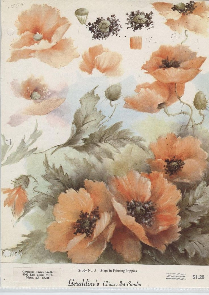 Steps in Painting Poppies by Geraldine Rarick China Painting Study | eBay