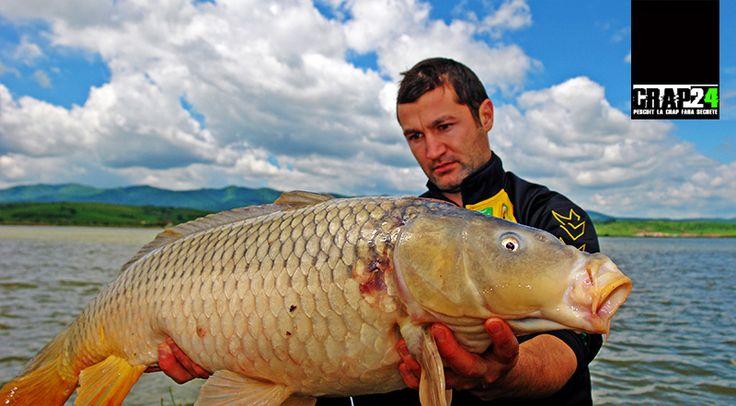 """Cristian Rudeanu/Carping Club: """"Fără a avea pretenția că facem istorie, suntem convinși că, în anumite condiții, această montură ar putea să vă îmbunătățească semnificativ randamentul la pescuit!""""  Detalii, FOTO și montura Explicată Pas cu Pas doar AICI >>> http://www.crap24.ro/montura-de-pescuit-crap-la-distanta-long-carping-rig/"""