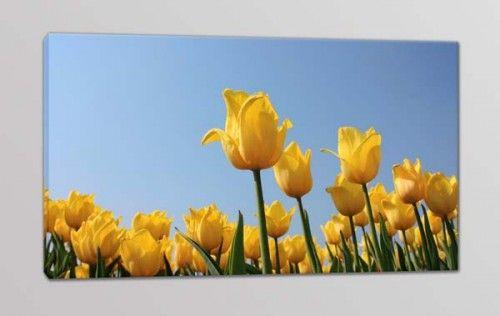 quadro moderno tulipani gialli