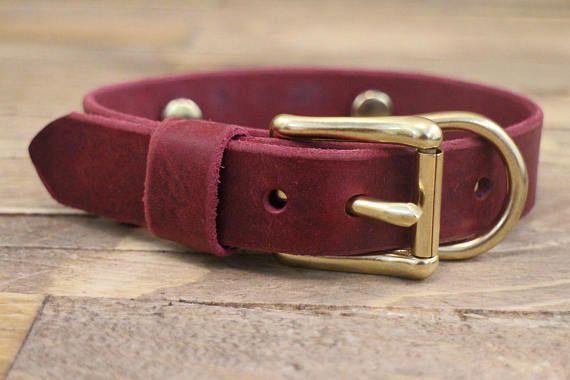 Dog collars 1 inch collar FREE ID TAG leather collars