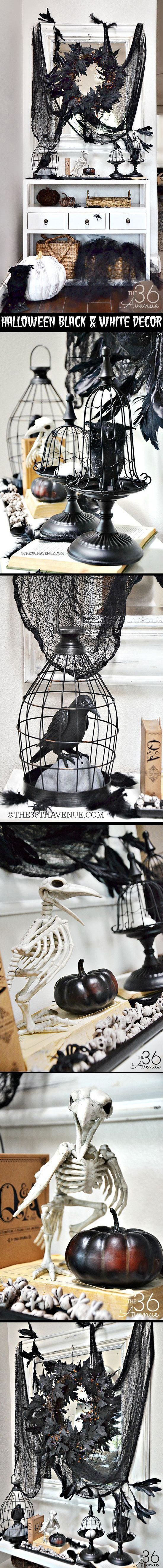 265 best Beware the Birds! Black & White Theme Poe & Hitchcock ...