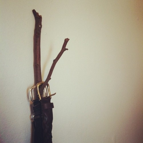 I found a branch outside, took it home and hung it on my wall. It's now my belt rack.