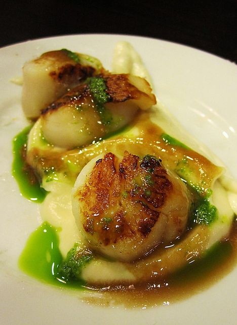 Vieira Asada con Puré de Coliflor... Grilled Scallops with Cauliflour Puree | Flickr - Photo Sharing!