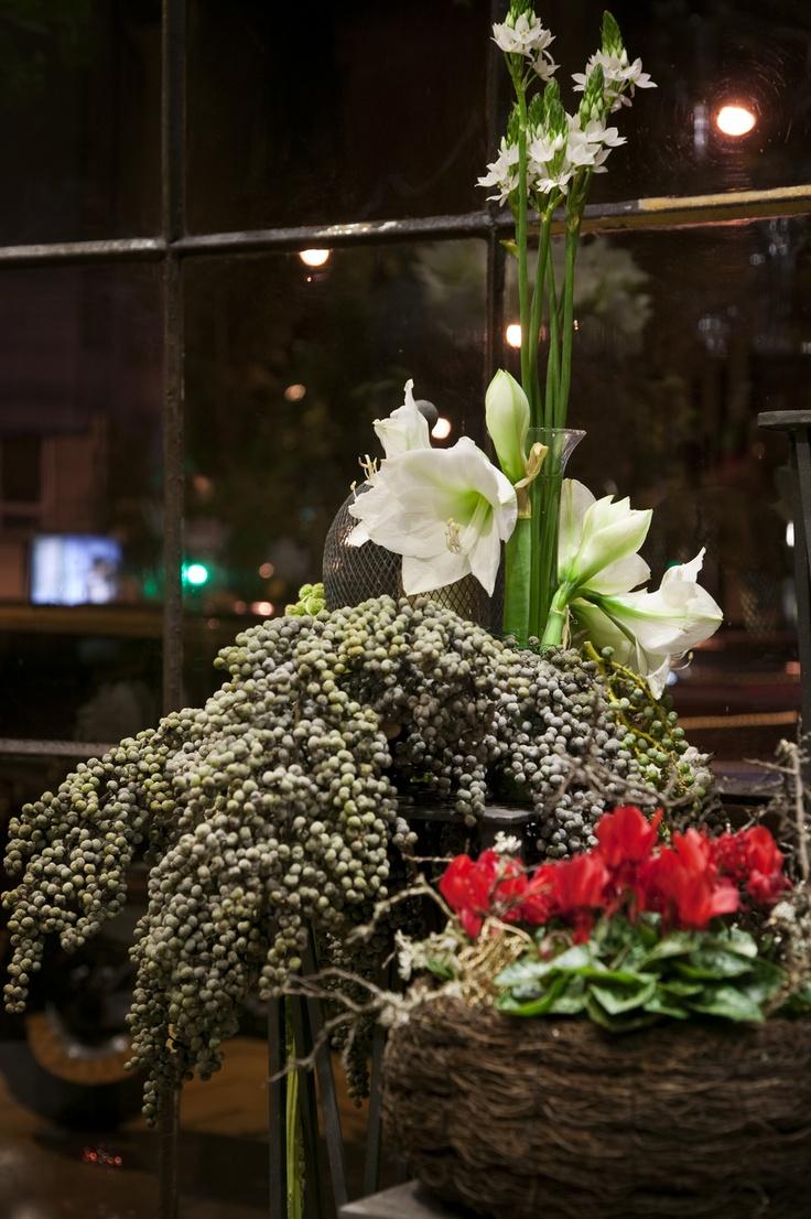 Flores para los rincones de tu casa para la Navidad #navidad #decoracion #christmas #decorations
