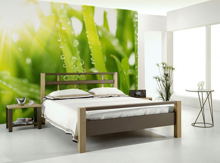 20 best images about wall paper love on pinterest music for Beautiful birch tree wall mural