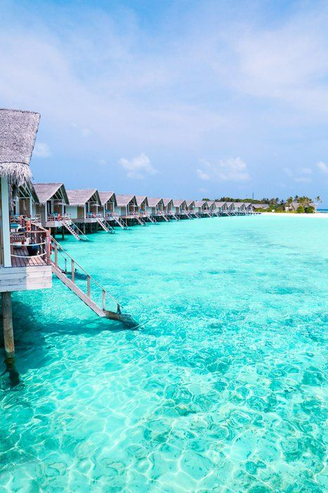 The Travellers Planet blog is a beachaholic's dream. Traveling from resort to resort (in this case the Loama Resort Maldives), these photographers show that cabins on stilts are just as beautiful as snow-capped cabins in the woods.