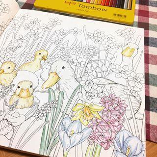 前からやってみたかった大人の塗り絵 #大人の塗り絵 #早く完成させたい #まだ未完成 #うずうず #楽し過ぎる #没頭 #塗り絵 #新しい趣味 #いろえんぴつ #coloringbook #幸せのメヌエット