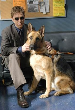 Jim Dunbar (played by Ron Eldard) with his guide dog, Hank in Blind Justice.
